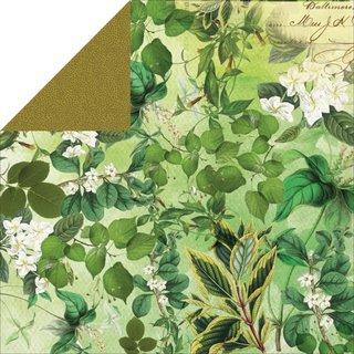 Limelight Double Sided Cardstock Paper Learn